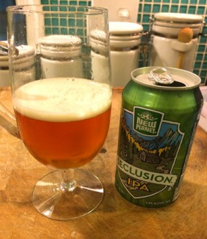 seclusion-ipa-can-glass